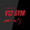 Scholly's V12 Gym